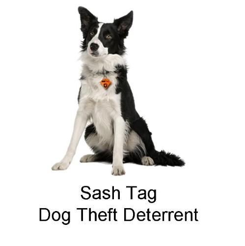 DOG THEFT DETERRENT - SASHTAG
